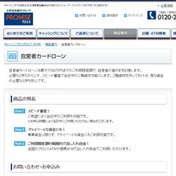 promise_web